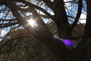 Sun and orb